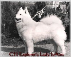 explorer's lady joann